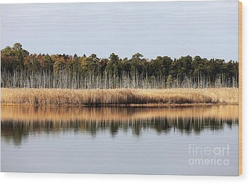Pine Barrens Reflections Wood Print by John Rizzuto