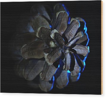 Pine Cone Ice Wood Print by Todd Soderstrom