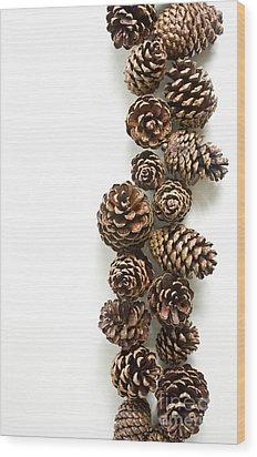Pine Cones Wood Print by Edward Fielding