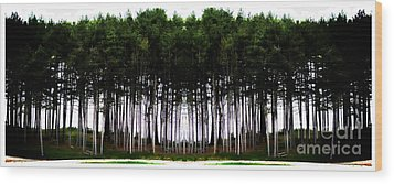 Pine Forest Wood Print by Marcia Lee Jones