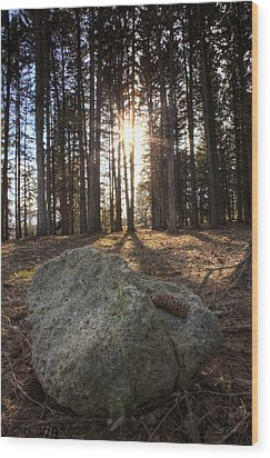 Pine Rock Wood Print by Ed Cilley