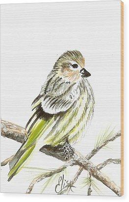 Pine Siskin Finch Wood Print by Elisa Gabrielli