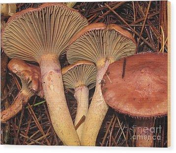 Pine Spikes Wood Print