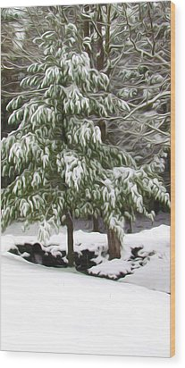 Pine Tree Covered With Snow 2 Wood Print by Lanjee Chee