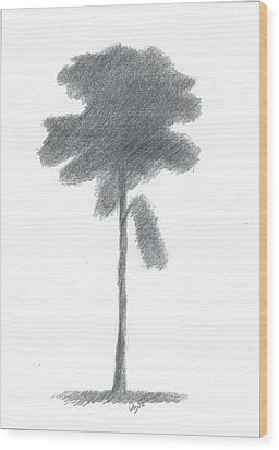 Pine Tree Drawing Number Three Wood Print by Alan Daysh