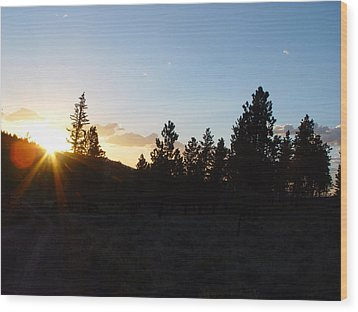 Pine Tree Sunset Wood Print by Mark Russell
