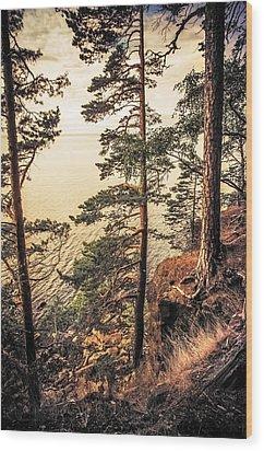 Pine Trees Of Holy Island Wood Print by Jenny Rainbow