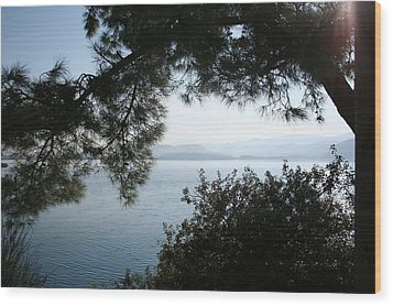 Wood Print featuring the photograph Pine Trees Overhanging The Aegean Sea by Tracey Harrington-Simpson