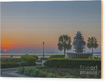 Wood Print featuring the photograph Dawns Light by Dale Powell
