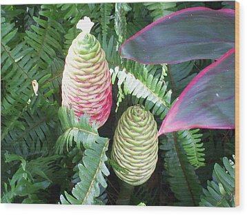 Pineapple Ginger Wood Print by Belinda Lee