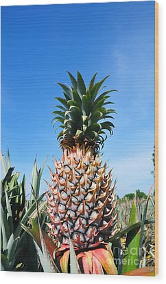 Pineapple Wood Print by William Voon