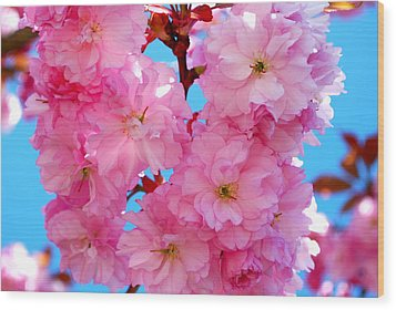 Pink And Blue Wood Print by Richard Hinger
