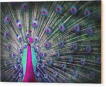 Pink And Blues Peacock Wood Print by Diana Shively