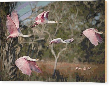 Pink And Feathers Wood Print