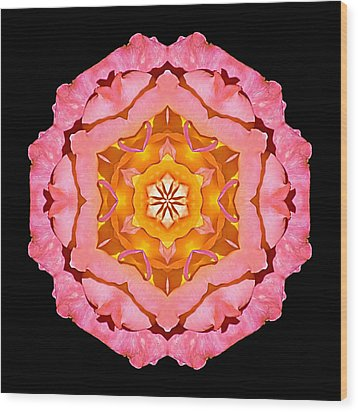 Wood Print featuring the photograph Pink And Orange Rose I Flower Mandala by David J Bookbinder