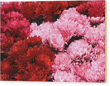 Pink And Red Wood Print by Menachem Ganon