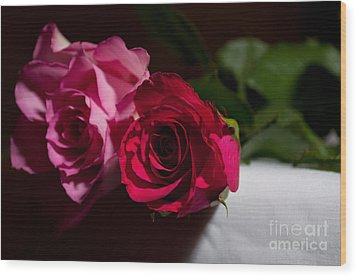 Wood Print featuring the photograph Pink And Red Rose by Matt Malloy