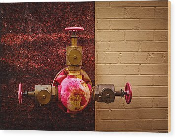 Pink And Rusted Wood Print