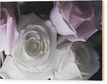Pink And White Roses Wood Print by Jennifer Ancker