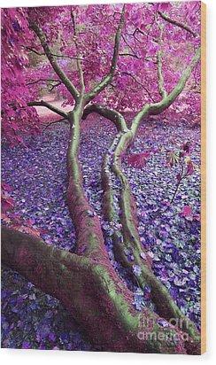 Pink Autumn Wood Print by Sally Barnett