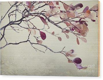 Pink Blueberry Leaves Wood Print by Priska Wettstein