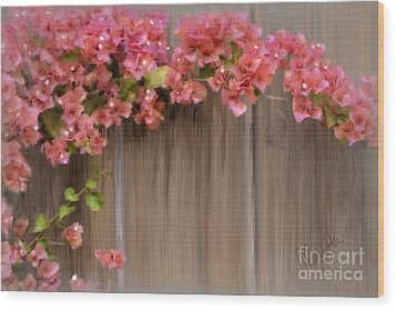 Pink Bougainvillea Wood Print by Andrea Auletta