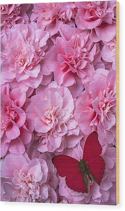 Pink Camilla's And Red Butterfly Wood Print by Garry Gay