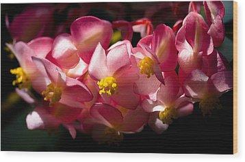 Pink Cascade Wood Print by David Patterson