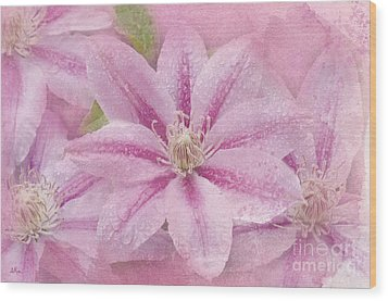 Pink Clematis Profusion Wood Print by Betty LaRue