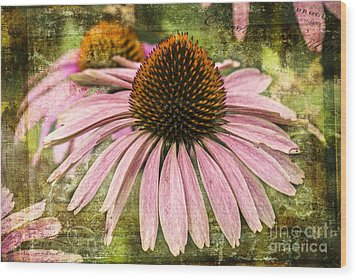 Wood Print featuring the photograph Pink Coneflower by Vicki DeVico