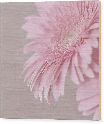 Pink Delight Wood Print by Kim Hojnacki