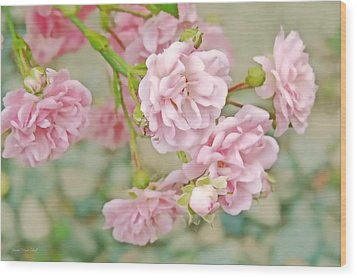 Pink Fairy Roses Wood Print by Jennie Marie Schell