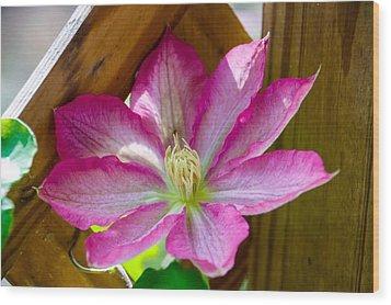 Pink Fantasy Wood Print