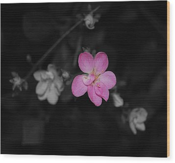 Wood Print featuring the photograph Pink Flower  by Maggy Marsh