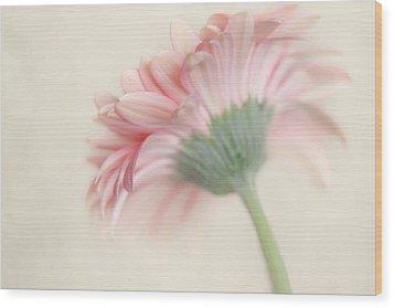 Pink Flower Photography - Pink Nursery Wall Art - Baby Girl Nursery Art - Pale Pink Mint Green Decor Wood Print by Amy Tyler