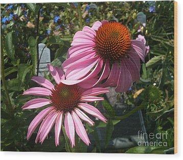 Pink Flowers Wood Print by Amber Beach