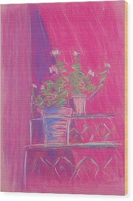 Pink Geraniums Wood Print by Marcia Meade