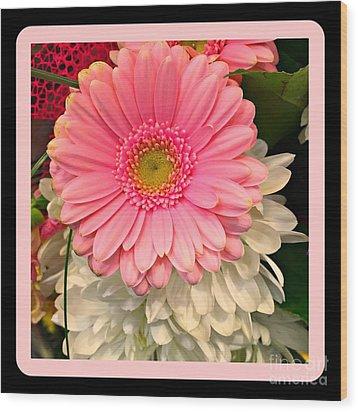 Pink Gerber Daisy Wood Print