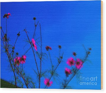 Pink Green And Blue Wood Print by Tina M Wenger