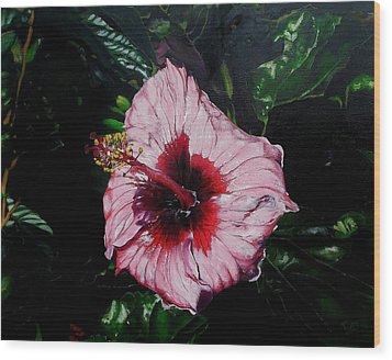Pink Hibiscus Wood Print by Raymond Perez