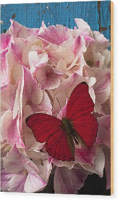 Pink Hydrangea With Red Butterfly Wood Print by Garry Gay