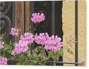 Wood Print featuring the photograph Pink In My Window by Lew Davis