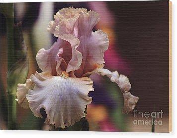 Pink Iris Flower Wood Print