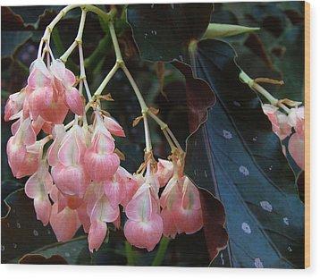 Pink Wood Print by Kim DePietro