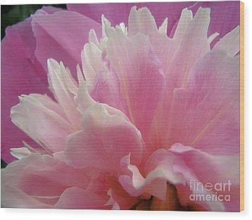 Pink Wood Print by Kristine Nora