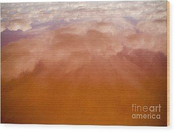 Pink Lake Wood Print by Tim Hester