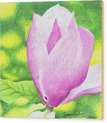 Wood Print featuring the painting Pink Magnolia by Susan Herbst