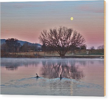 Wood Print featuring the photograph Pink Morning by Lynn Hopwood