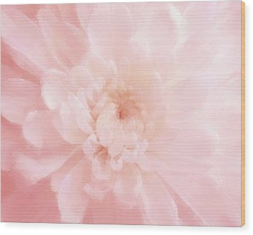 Pink Mum Luminous Painted Blossom Wood Print by Patricia E Sundik