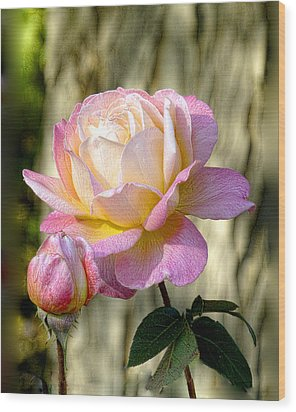 Pink October Rose Wood Print